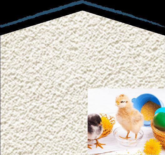 卵由来のエッグウォール